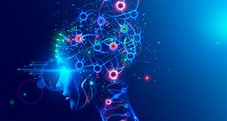 BrainSim-2021-lp-M