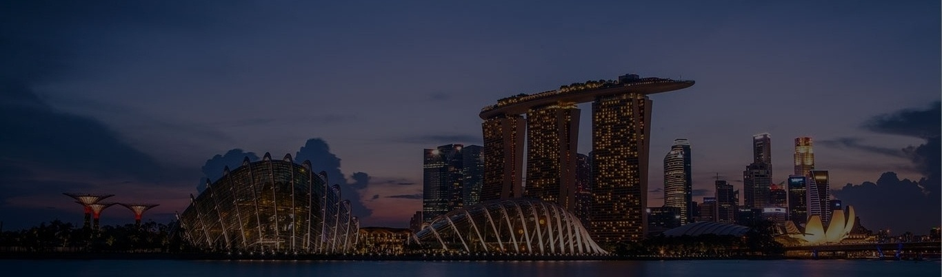 Singapore-2006-cropped-height-2.jpg