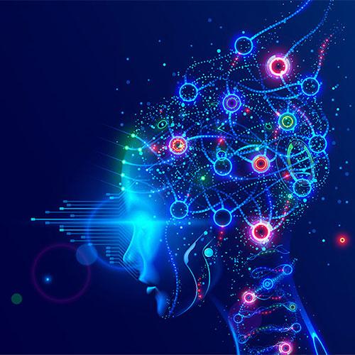 BrainSim-2021-hp-school-highlights